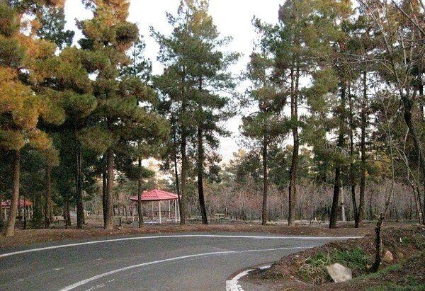 نصب آلاچیق و مبلمان پارکی  جدید در جنگل سرخه حصار