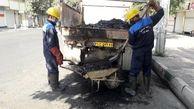 اجرای طرح آخر هفته نگهداشت شهر در منطقه17