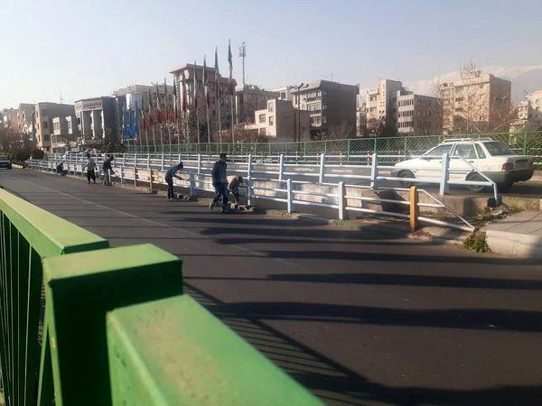 نوروزی رنگارنگ با چشم نوازی  دیواره های شهری منطقه ۴