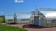 راه اندازی شهرک گلخانه ای دراستان کرمان با حمایت 576 میلیاردی بانک کشاورزی