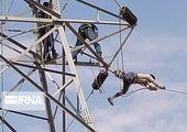 افزایش سقف تامین مالی پروژه انتقال نیروی برق به ارمنستان توسط بانک توسعه صادرات