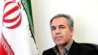 عرب: برانکو در پرسپولیس میماند