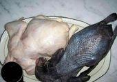 طوطی سیاه ! +عکس