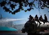 """تشریح وضعیت """"سگهای بلاصاحب"""" پایتخت در روزهای کرونایی"""