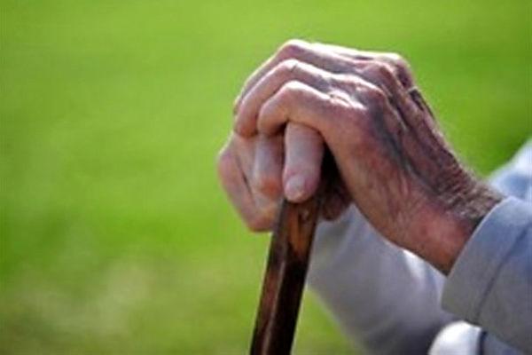 ایران به لحاظ جمعیت سالمند در وضعیت متوسطی قرار دارد
