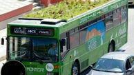 پوشش گیاهی روی سقف اتوبوس ها برای کاهش آلودگی+عکس