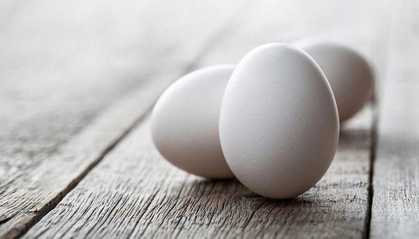 کاهش قیمت تخم مرغ در سایه فراوانی کالا