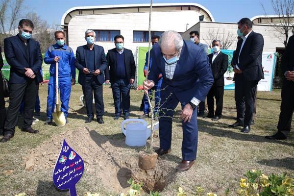 آیین گرامیداشت هفته درختکاری در آکادمی ملی المپیک برگزار شد