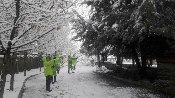 شمال تهران سفید پوش شد .
