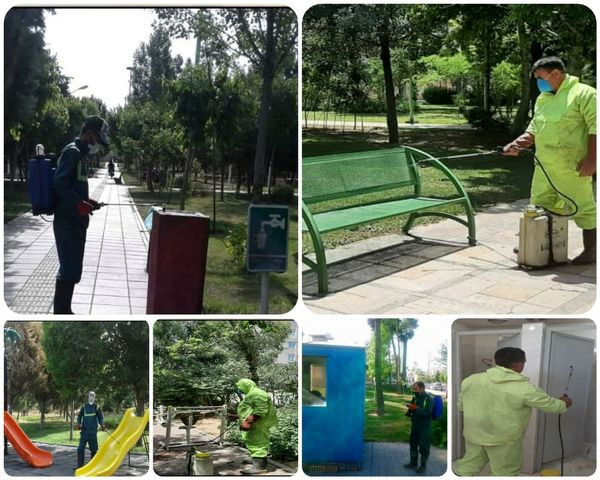 شست وشوی روزانه فضاهای سبز شهری در منطقه 15