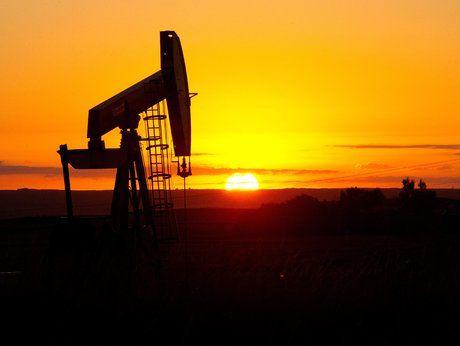 بانک جهانی: روسیه میتواند با نوسان قیمت نفت بسازد