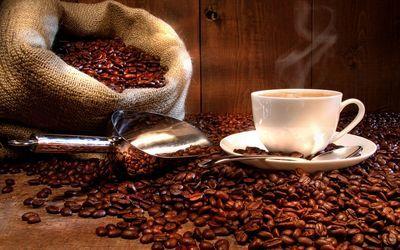 """""""اسلحه"""" ای که فنجان قهوه را از 1280متری پودر می کند! + عکس"""