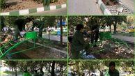 توسعه و گسترش فضای سبز ناحیه ۲ منطقه شش
