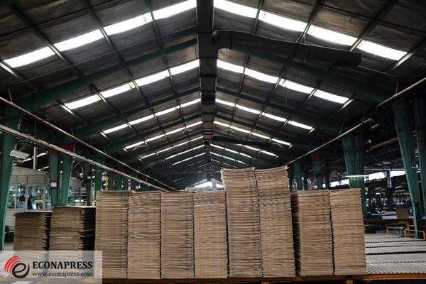 تخصیص دلار ۳۸۰۰ تومانی به صنعت کاغذ به سه شرط