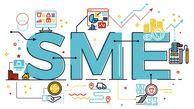 نقش مهم SME ها  در اقتصاد جهان