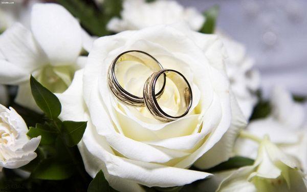رشد ۵ درصدی ازدواج در پاندمی کرونا در کشور