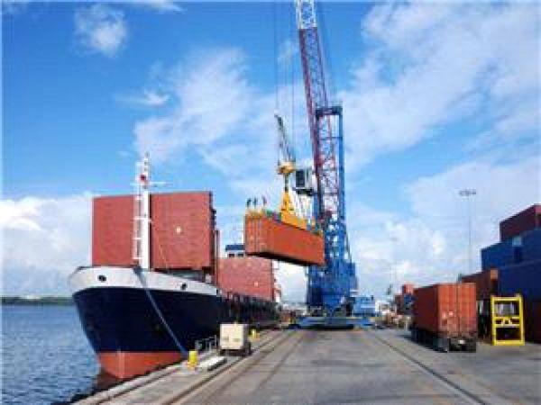 انتقاد وزیر اقتصاد از تغییر پیاپی بخشنامه بازگشت ارز صادراتی