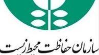 تدوین دستورالعمل نظارتی سگهای بلاصاحب تهران