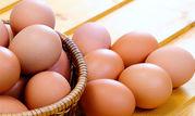 قیمت تخممرغ در همدان افزایش یافته اما علت معلوم نیست